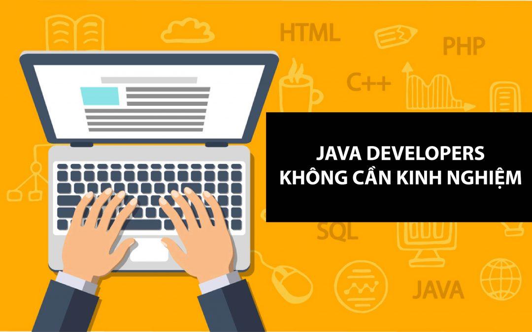 Velacorp tuyển dụng Juinor Java Developer mức lương 8 chữ số