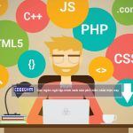 Ngôn ngữ lập trình web nào phổ biến nhất hiện nay?