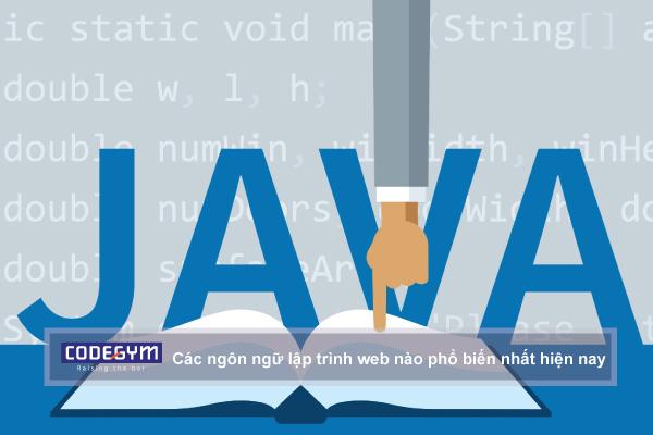 Các ngôn ngữ lập trình web nào phổ biến nhất hiện nay?
