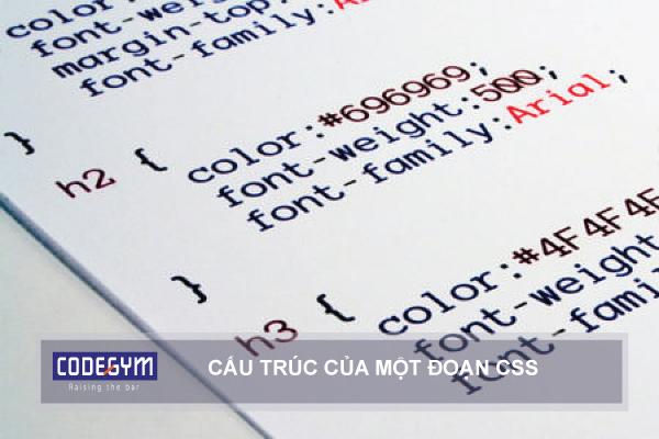 Lập Trình Web Viết Về CSS
