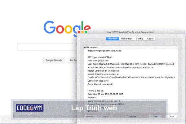 lập trình viên viết nhiều ngôn ngữ có thể dùng lập trình web được, thoải mái chọn: PHP, JAVA, NODE, RUBY, vv.