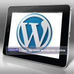 Học lập trình wordpress online ở đâu tốt nhất?