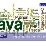 Học lập trình nên học ngôn ngữ nào là phù hợp nhất hiện nay?