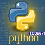 Tải xuống trọn bộ giáo trình lập trình Python từ cơ bản đến nâng cao