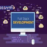 Lập trình viên full stack là gì? Công việc có dễ dàng không?