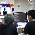 Nghề lập trình viên làm gì trong doanh nghiệp hiện nay